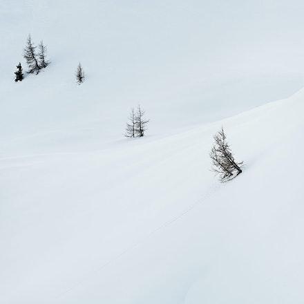050---Dolomites---Cinque-Torri---060219-1019-Edit-copy-2