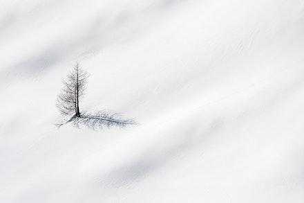 051---Dolomites---Cinque-Torri---070219-1150-Edit