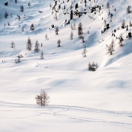 051---Dolomites---Cinque-Torri---070219-1092-1-copy