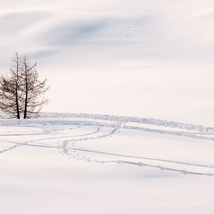 051---Dolomites---Cinque-Torri---070219-10921-Edit-copy