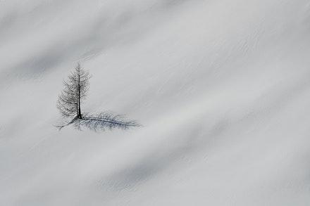 051 - Dolomites - Cinque Torri - 070219-1150-Edit