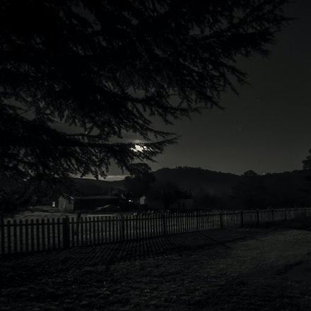 Dark Nights Collections - This gallery contains images I have photographed in back & white and low key, my aim to capture a very moody image of streets.