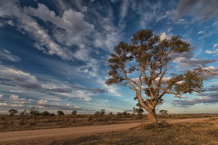 Afternoon Glow - A Road less travelled, in Outback South Australia
