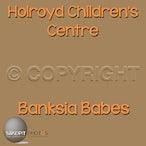 Holroyd Childrens Centre Banksia Babes