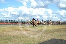 Race 4 Le Beau Renard