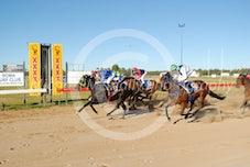Race 4 Repo Zest