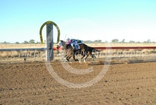 Race 5 Cavitation