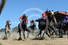 Race 2 Tarwyn Blue