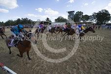 Race 4 Riverina Gold