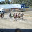 Race 1 High on Montana