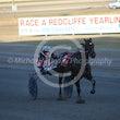 Race 6 Dapper