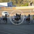 Race 7 Hammerhoff