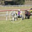 Mini Trotters Race 1 Dazzling Opal
