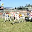 Mini Trots Race 2 Twist of Fate