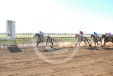 Race 3 Gud Onya