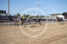 Race 3 Canid