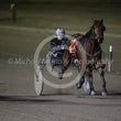 Race 8 Dallas Cowgirl