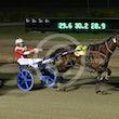 Race 3 Hammerhoff