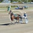 Race 1 Ali Downunder