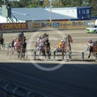 Race 5 Willsintown
