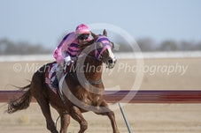 Race 5 Moving Target