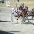 Race 2 Broadwater