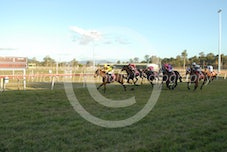 Race 7 Coonowrin Ruby