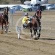 Race 4 High On Montana