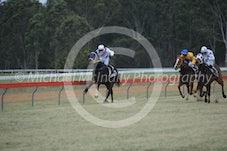 Race 2 Hi Harry