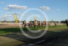 Race 5 Shez our Destiny