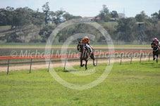 Race 2 Rosexcel
