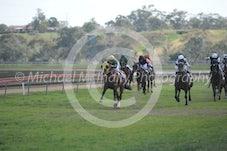 Race 3 Youl Beatem