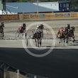 Race 5 Shilah