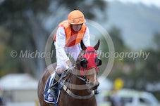 Race 2 Master Denrho