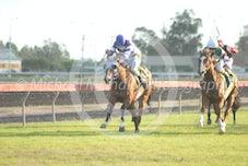 Race 7 Mac's Gal