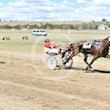 Race 3 Lighthorse
