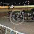Race 6 Lilac Flash
