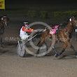 Race 9 Mister Gunsen