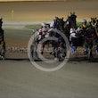 Race 2 Lady Ell Aye