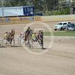 Race 1 None Bettor