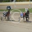 Race 3 Royal Lincoln