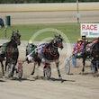 Race 3 Photozen