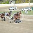 Race 7 Fours Enuf Tas
