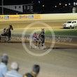 Race 7 Taffy Boy