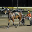 Race 9 Northern Muscle