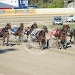 Race 7 Broadwater