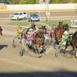 Race 8 Sammari