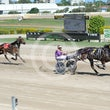 Race 1 Mr Kalypso