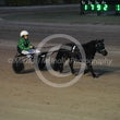 Mini Trotters Race 1 The Ace Invader
