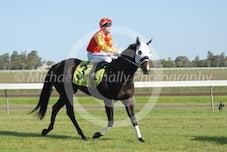 Race 4 Rough Eddie
